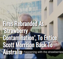 Screenshot_2019-12-22 The Shovel - Australia's satire news website.png