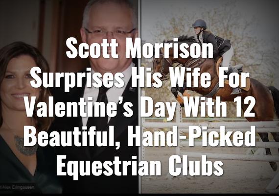 Screenshot_2020-02-15 The Shovel - Australia's satire news website.png